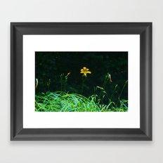 single flower Framed Art Print
