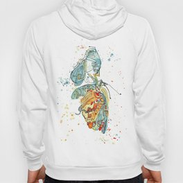 Butterfly with Chrysalis Hoody