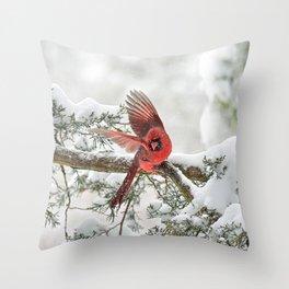 Winter Snow Flight: Northern Cardinal Throw Pillow