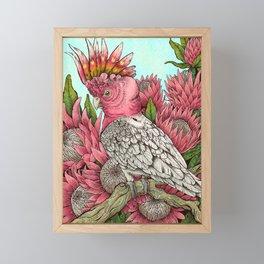 Major Mitchells Cockatoo Framed Mini Art Print