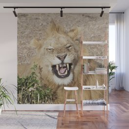 The laughing lion Wall Mural