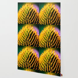 Cone Flower Wallpaper