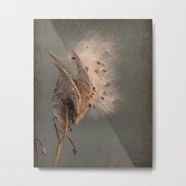 "Milkweed Pod - ""Wish Fairies"" Metal Print"