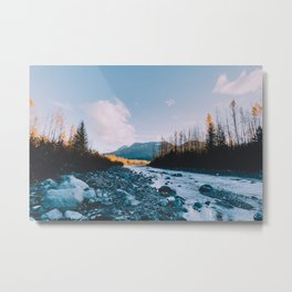 Autumn in Kenai Fjords National Park V Metal Print