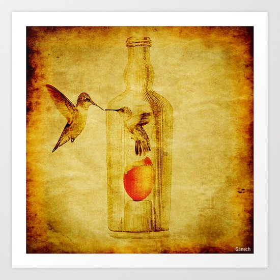 The lovers hummingbird Art Print