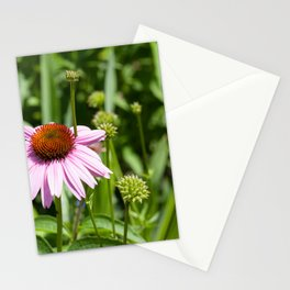 Flower Peddles Stationery Cards