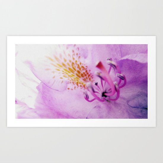 Stamen Exposed Art Print