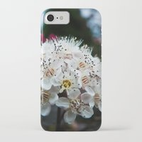 coasters iPhone & iPod Cases featuring Cedar Point Floral by kristi-cakes
