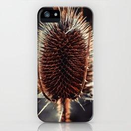 Thistle Photograph iPhone Case