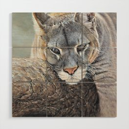 Just Chillin - Cougar Painting by Alan M Hunt Wood Wall Art