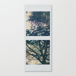 up below Canvas Print
