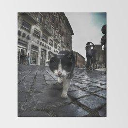 Street Cat Throw Blanket