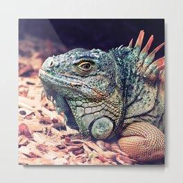 Fabulous Lizard Metal Print
