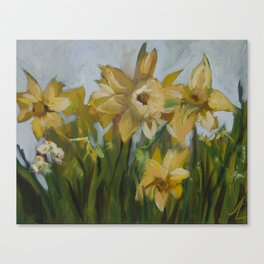 Clouds of Daffodils Canvas Print