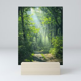 Woodland Glory Mini Art Print