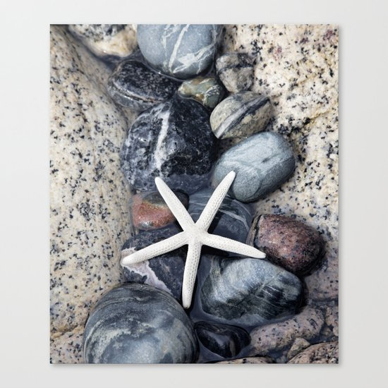 Starfish and pebble on beach Canvas Print