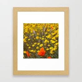 Patches of Gold Framed Art Print