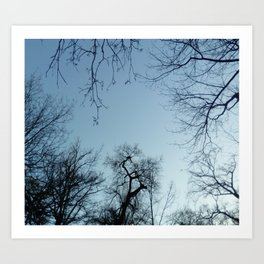 Nature, landscape and twilight 3 Art Print