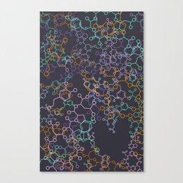 biological basis of love. Canvas Print