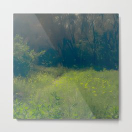 Greenbelt Metal Print