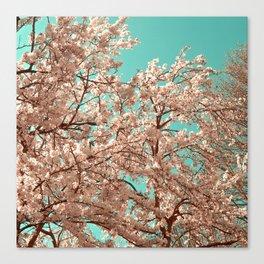 spring tree XVIII Canvas Print