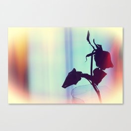 Wilting Rose 2 Canvas Print