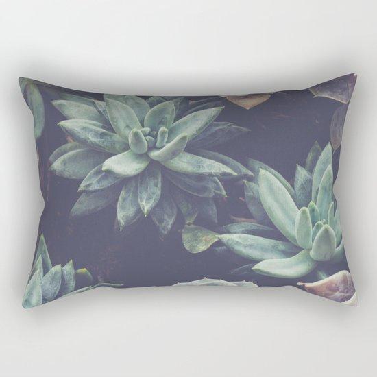 Succulent by quinnhopp