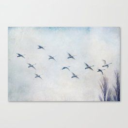 my special way of life Canvas Print