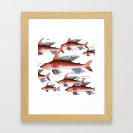 School Over Crowding Framed Art Print