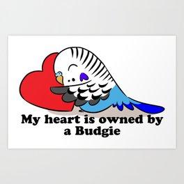 My heart belongs to a blue budgie Art Print