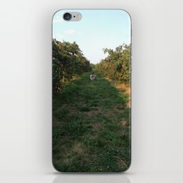 Solace iPhone Skin