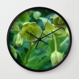Helleborus Foetidus Wall Clock