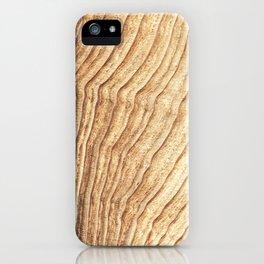 Noon Sun Farm 5 iPhone Case