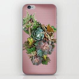 Succulent gardens iPhone Skin