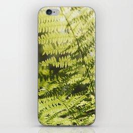 Sun leaf iPhone Skin