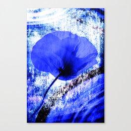Blue Poppy vintage 222 Canvas Print