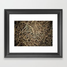 Ground Cover Framed Art Print