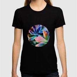 Spectacular Succulents 2 T-shirt