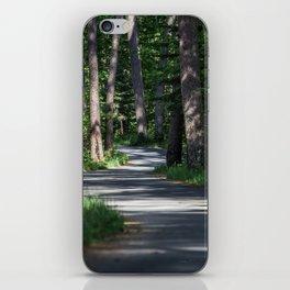 Itasca's Winding Road iPhone Skin
