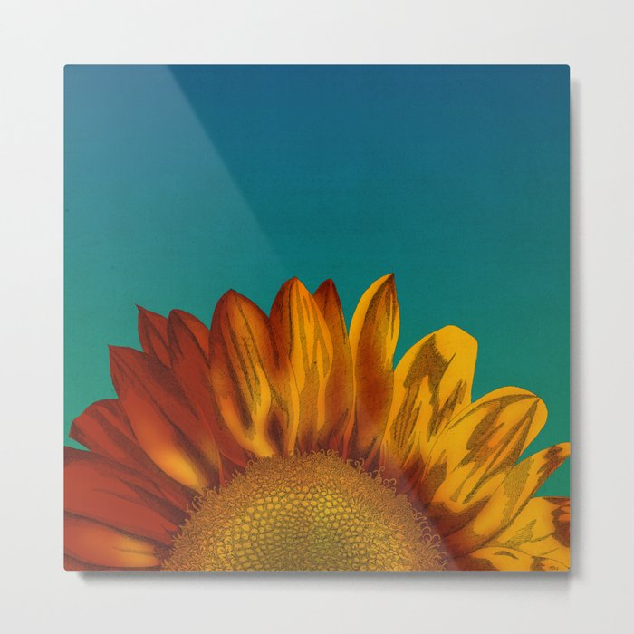 A Sunflower Metal Print