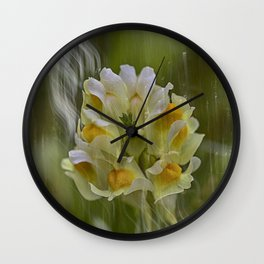 Yellow common Toadflax flower Wall Clock
