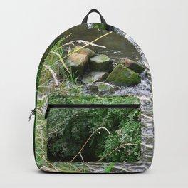 Weser Water Backpack