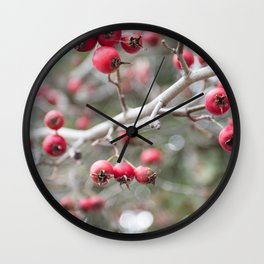 Crab Apples in the Early Winter Wall Clock