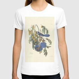Florida scrub jay by Audubon T-shirt