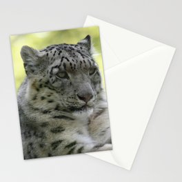 Leopard 2014-1003 Stationery Cards