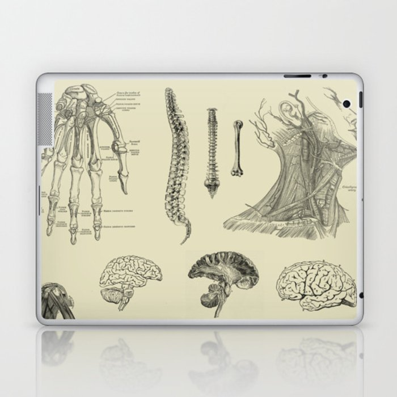 Vintage Anatomy Print Laptop & iPad Skin