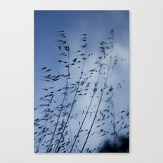 Quiet conversation with grass Canvas Print