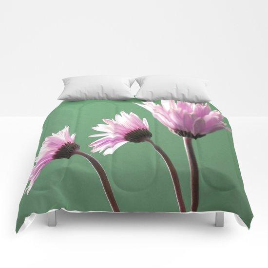 Rose Gerber Daisy Comforters