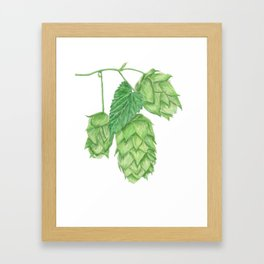 Beer Hop Flowers Framed Art Print