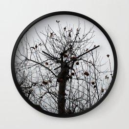 Winter's Apples Wall Clock